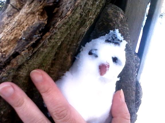 Snow gnome.