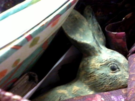 Thrifty Rabbit